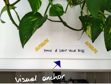 Setting visual anchors